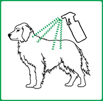 Solpreme-Spray-dog