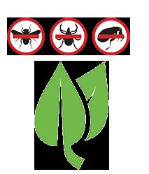natural-flea-tick-control-icon