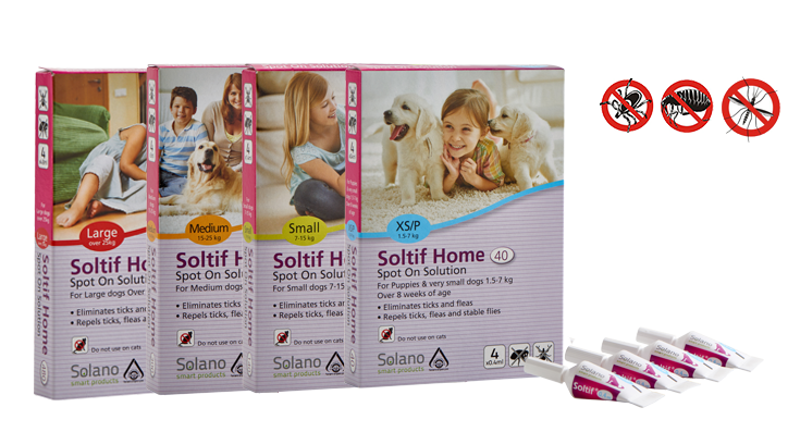 soltif_home_all