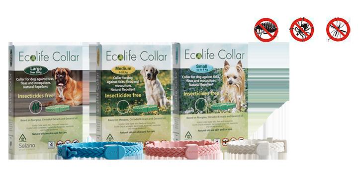 Ecolife-Collar