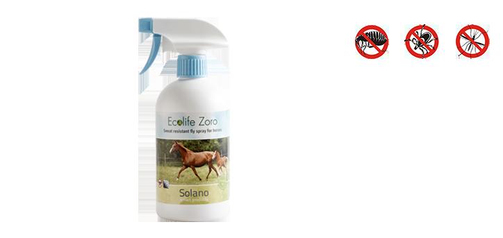 Ecolife-Zoro