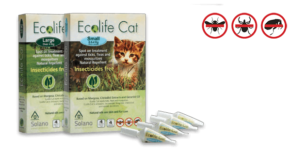 ecolife_amps_cat