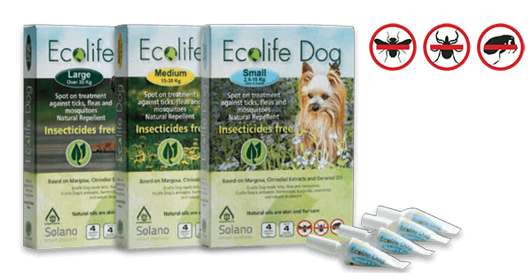 ecolife_amps_dog