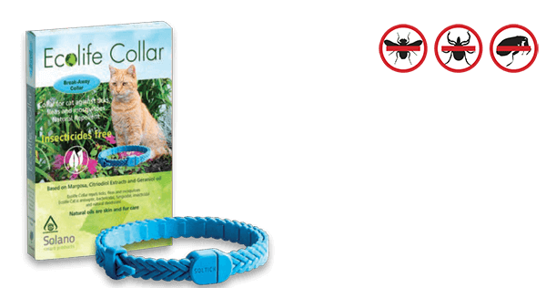 ecolife_collar_cat