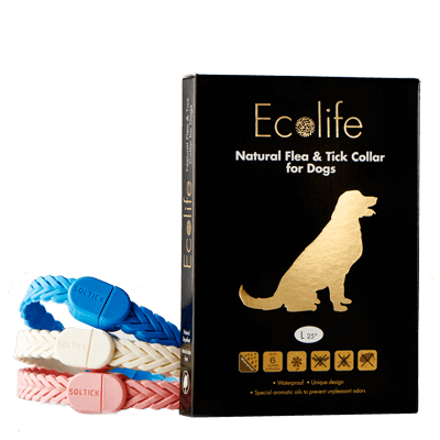 ecolifeUSA-collar-dog